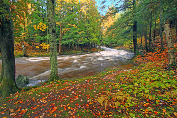 Wall Mural - Michigan Autumn Cascades