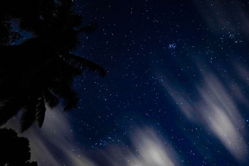 Starry night sky with moving clouds and palms