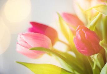 tulip bouquet - wedding, holiday and floral garden styled concept