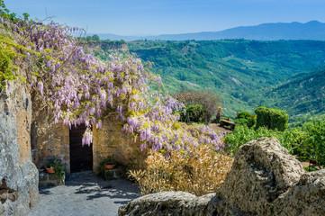 Old fortress walls decorated with flowers, Civita di Bagnoregio