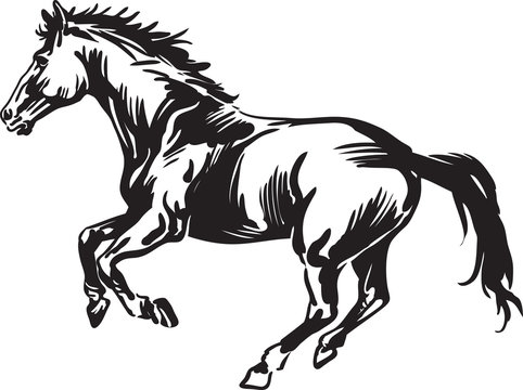 Black and white drawing of a horse