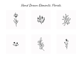 Vector set of floral hand drawn elements in elegant and minimal style.