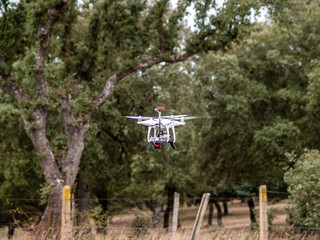 A drone in motion flying in forest in the cloudy sky and trees near