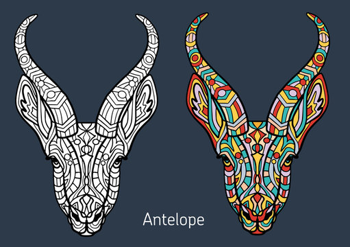 Coloring book for adults. antelope head with hand-drawn patterns. The antelope head is decorated with ornament. Hand drawing.