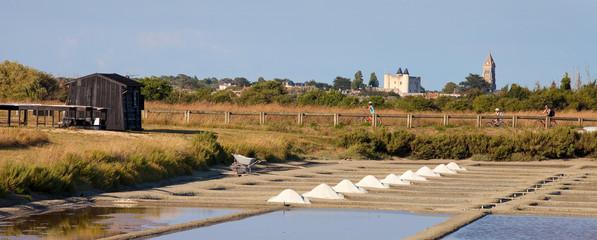 Saunier ramassant du sel dans les marais de Noirmoutier