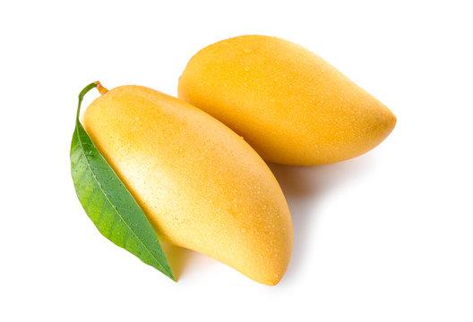 Fresh ripe mango fruits isolated on white