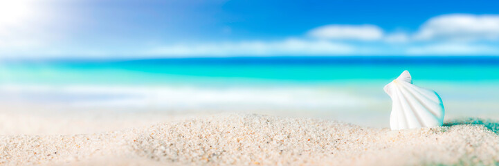 Seashell On Sandy Beach With Tropical Water, Sun, Blue Sky And Fluffy White Clouds - Beach Holiday Concept