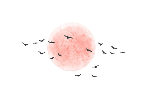 Red Sun and Flying Birds Isolated
