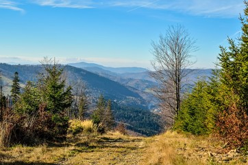Beautiful autumnal mountain landscape. View of the valley and green hills.