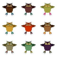 colored owls on white isolated