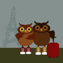 nice owls travel in Paris