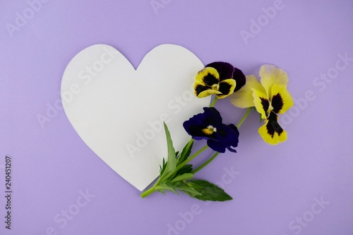 Flower card.Card with heart and flowers. pansy flower and white heart on purple background.Valentine's Day. Mothers Day. top view, copy space.International Women's Day