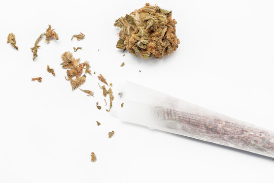 Rolling cannabis joint with tobacco on white backgound