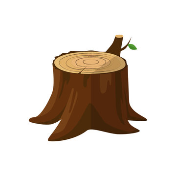 Cartoon Tree Stump Photos Royalty Free Images Graphics Vectors Videos Adobe Stock After a tree has been cut and felled, the stump or tree stump is usually a small remaining portion of the here are the steps to draw cartoon tree stump. cartoon tree stump photos royalty free