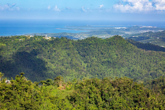 El Yunque National Forest Puerto Rico scenic view