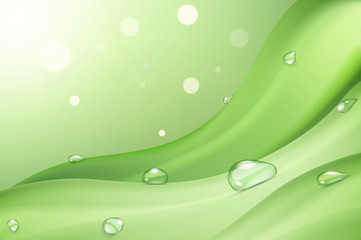 Drops of dew on green grass in the sunlight, eco disgn background