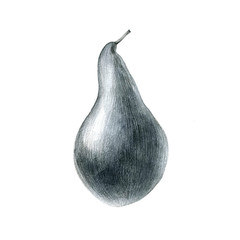 pencil drawing pear