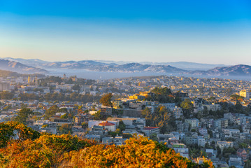 Wall Mural - Panoramic view of the San Francisco city.