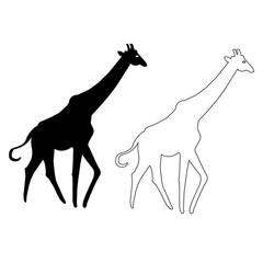 Giraffe  silhouette Vector icon, Giraffe outline vector icon set