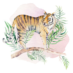 Watercolor tiger illustration and summer paradise tropical leaves jungle print. Palm plant and flower isolated o white.