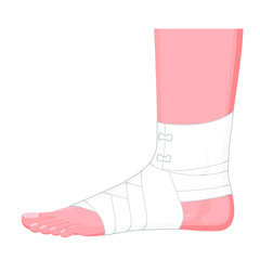 Vector illustration. Correct way to wrap human ankle by flexible elastic supportive orthopedic bandage (sprain, strain). Lateral view.  For advertising, medical publications