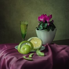 Still life with cyclamen and grapefruits