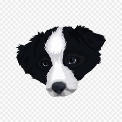dog illustration design vector no background