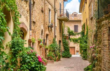 Scenic sight in Pienza, Province of Siena, Tuscany, Italy.