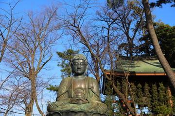 日本の千葉県の法華経時の大仏様