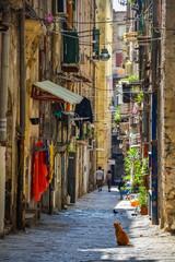 Foto auf AluDibond Neapel Empty street at the city of Naples, Italy