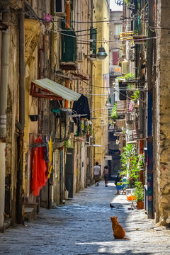 Empty street at the city of Naples, Italy