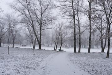 Snowy winter in the park in Minsk, Belarus