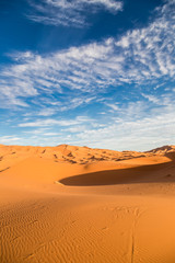 Vertical view of Sahara desert
