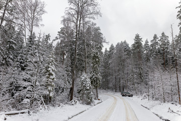 Road at white winter landscape in the forest