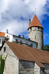 Altstadt von Tallinn mit historischem Turm, Estland