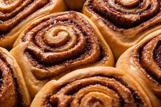 Fresh Cinnamon Rolls Sweet and Tasty Cinnabons