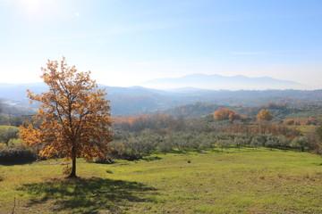 Tuscany Nature Moments