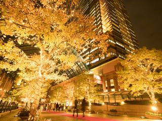 Fototapete - 恵比寿ガーデンプレイスのイルミネーション