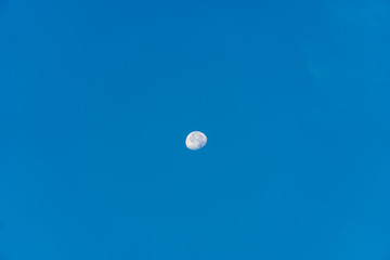 Moon and morning sky