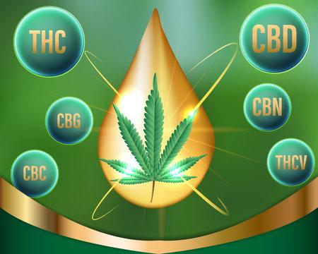 Chemical of natural Marijuana,cannabinoids in cannabis.Vector illustration