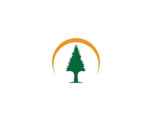 Pine tree logo icon