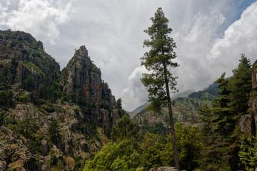 Wąwóz Restonica, Korsyka