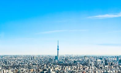 スカイツリーと東京の街並み