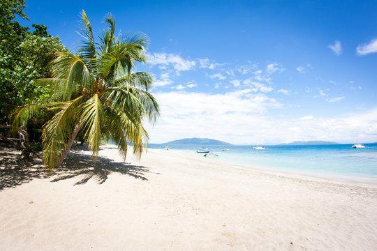 traumhafter weißer Strand mit Palmen und türkisfarbenden Wasser in Madagaskar auf der Insel Nosy Komba