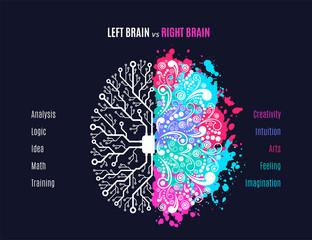 Fototapeta left and right brain concept obraz