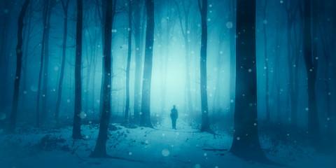 magical winter scene, man walking on snowy path in forest