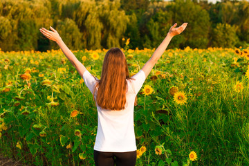 Young woman with long hair in sunflower Field with hands up. Beauty girl outdoors enjoying nature