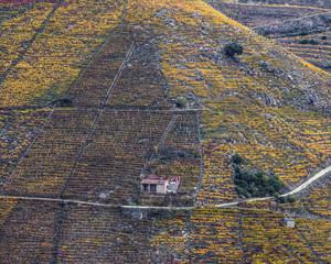 Wine exploitation in the steep rocky slopes of Ribeira Sacra