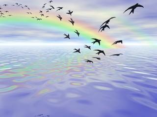 rondini migranti con arcobaleno