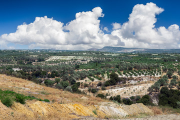 Landscape of Crete island in Greece. Olive tree groves, hills and fields.